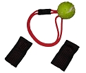 RedLine K9 EURO Magnet Ball Dog Toy & Body Magnet Set - Color may vary