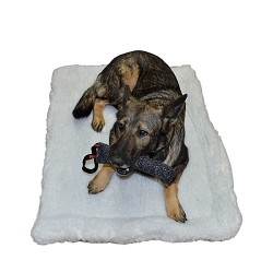 "16"" x 22"" Double Sided Sherpa Dog Bed  - 2 Layers"